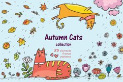 Autumn Cats - clip-art collection, patterns, frames Product Image 1