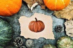 Watercolor Autumn Elements Product Image 4