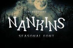 Web Font Nankins Font Product Image 1