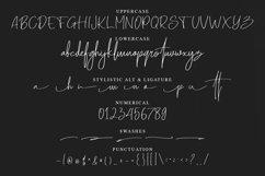 Senoteria Handwritten Signature Font Product Image 6
