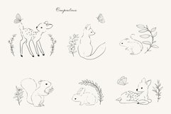 Wildflower botanical illustrations Product Image 4
