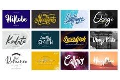 Mega Exclusive Font Bundle - 350 Font Product Image 25
