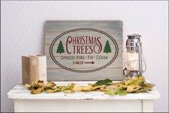 Christmas Trees SVG Product Image 1