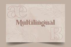 Abraghen | Ligature Serif Product Image 6
