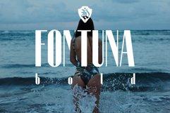 Fontuna bold Product Image 1