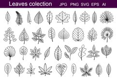 Leaves outline Product Image 1