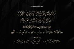 Wishlyttes Signature Font Product Image 2