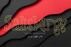 Sallsburgg Product Image 1