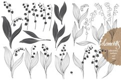 Lily of the valley. Product Image 2