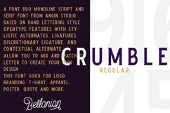 Bellonion Monoline Script Product Image 2