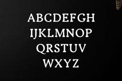 Ireene Serif 3 Font Family Pack Product Image 6