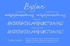 Biglove Brush Font Product Image 6