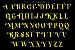 Hamachi Font Product Image 3