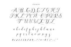 Billaneiva Typeface Product Image 5