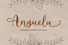 Anguela Script Handwriting Product Image 1
