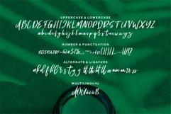 Sympathy - A Handwritten Script Font Product Image 6