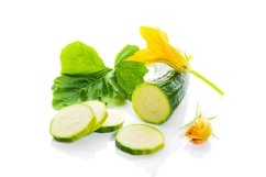 Zucchini or green marrow squash with green leaves and flower Product Image 1
