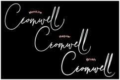 Cromwell 3 Fonts Product Image 2