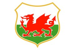 red welsh dragon Product Image 1