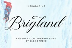 Brigland Product Image 1