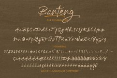 Banteng script Product Image 4