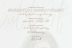 Web Font Butterfly - A Handwritten Signature Font Product Image 3
