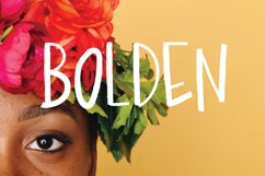 Bolden | Sans Serif Font Product Image 5