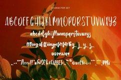 Web Font Joyousness - Handwritten Font Product Image 4