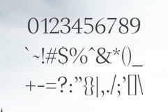 Haddie Modern Serif Font Family Product Image 3