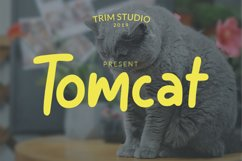Tomcat - Cheerfull Day Font Product Image 1