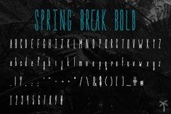 Spring Break Font & Bonus Graphics Product Image 5