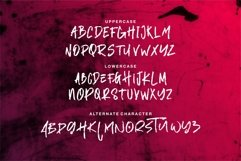 Armada - A Modern Hand Brush Font Product Image 8