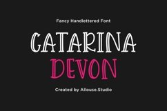 Web Font - Catarina Devon - Fancy Handlettered Font Product Image 1