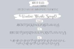 Winter Blush Product Image 2