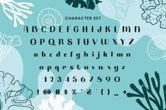 Web Font Petula Product Image 4