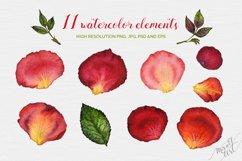 Floral watercolor rose petals Product Image 2
