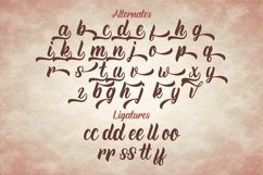 Rineghan - Bold Script Font Product Image 12