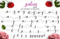 Jealous Script  Product Image 10