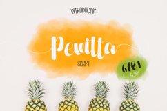 Pevitta Product Image 1