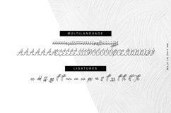 Ink Line | Modern Script Font Product Image 4