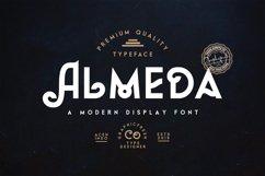 Almeda // A Modern Vintage Font Product Image 1