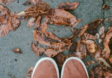 Feet man walking on fall leaves Product Image 1