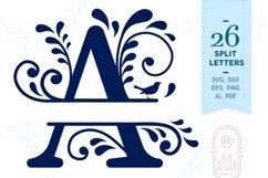 Split Monogram Alphabet with Flowers and Flourishes Product Image 1