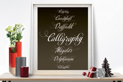 Calligraphy script Product Image 3