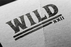 Adelard Scratches Font Product Image 3