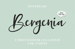 Bergenia Script FONT DUO Product Image 1
