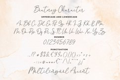 Beatney a Classy Signature Font Product Image 6