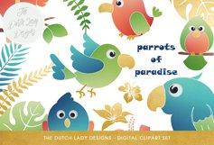 Tropical Parrots & Birds Clipart Set Product Image 1