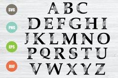 Floral Alphabet SVG, 26 Letters Product Image 2