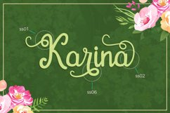 Gardena - Script Font Product Image 6